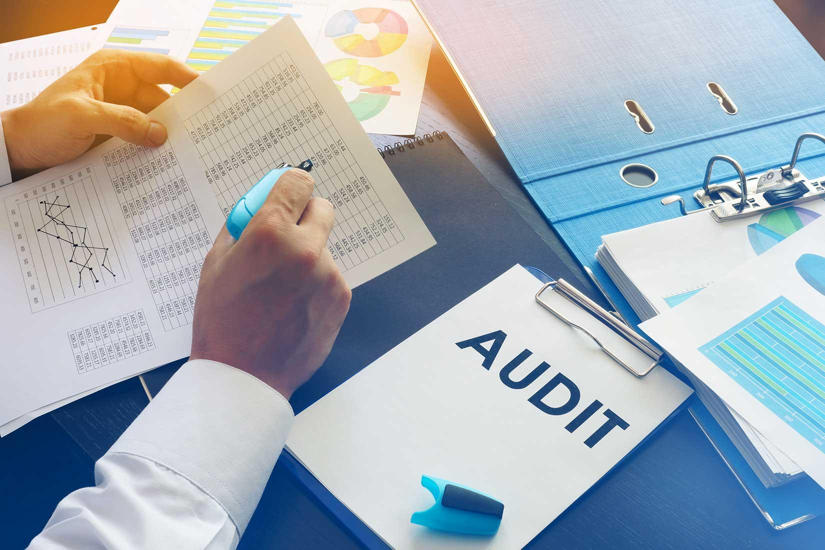 Internal Financial Audits